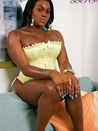 Feminine ebony tranny strips