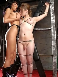 Tied up Tiffany gets blowed and teased by hot Alia