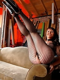 Naughty sex changed tranny in hot fishnets with a toy
