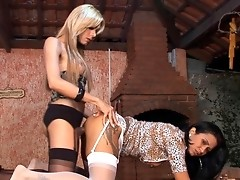 Ardent dick-girl rips a babe�s pussy apart right on the table in the cafe