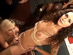 Horny transsexual Nikki getting her juicy cock sucked